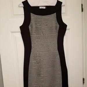 Calvin Klein Sleeveless two toned dress